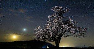 Tavaszi csillaghullás