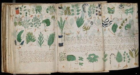 A rendkívül furcsa, egyedi és ismeretlen nyelven írt kódex a 15. század első évtizedeiben keletkezhetett