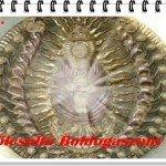 Szakrális Nőnap: Gyümölcsoltó Boldogasszony napja