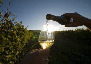 Hungarikum bormustra Keszthelyen
