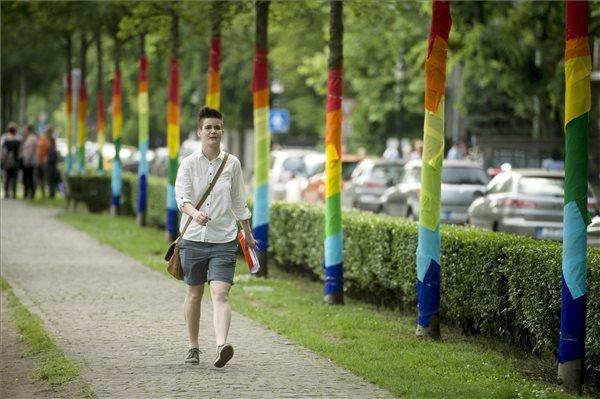 Milanovich Dominika, a Budapest Pride egyik sajtószóvivője érkezik a sajtótájékoztatóra a fővárosban, az Andrássy úton 2015. június 8-án. Előtte aktivisták színes szalagokkal díszítették fel a fákat a Budapest Pride szervezői csapat nevében. A sajtószóvivő elmondta, hogy a Budapest Pride célja, hogy felhívja a figyelmet a Magyarországon élő leszbikus, meleg, biszexuális, transznemű és queer (LMBTQ) embereket érintő kirekesztésre, a bántó előítéletekre és a jogegyenlőtlenségekre. MTI Fotó: Koszticsák Szilárd