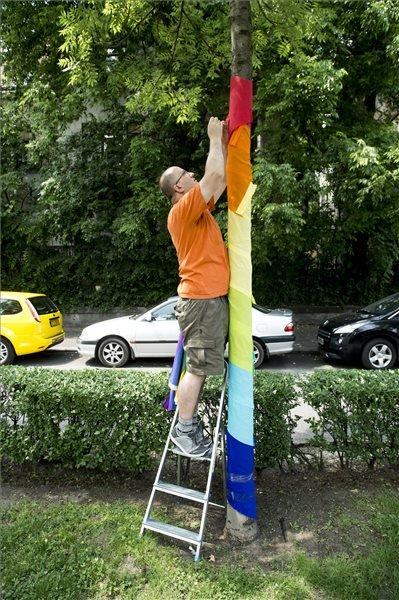 Egy aktivista szines szalagokkal díszít fel egy fát a Budapest Pride szervezői csapat nevében a fővárosban, az Andrássy úton 2015 június 8-án. MTI Fotó: Koszticsák Szilárd