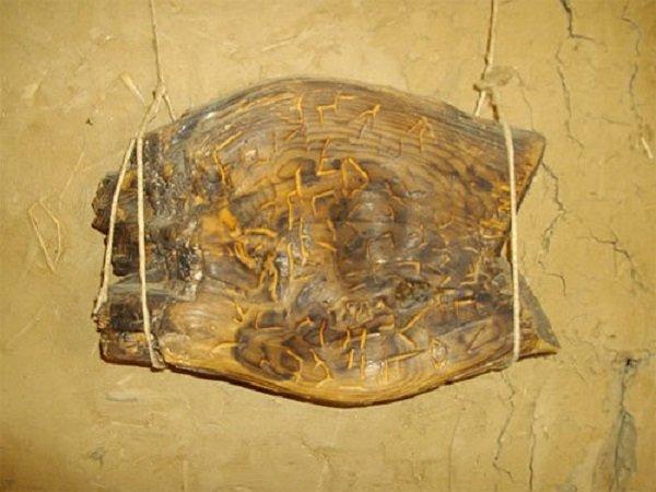 Görögországban, 1993-ban Dispilio faluban feltárt lelet. A fatáblán különleges jelek vannak, szénizotópos vizsgálatok alapján korát Kr. e. 5260-ra becsülték. - Fotó: Ancient Origin