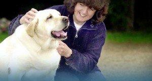 Az elhízott kutyák viselkedése és a túlsúlyos emberek egyes személyiségjegyei