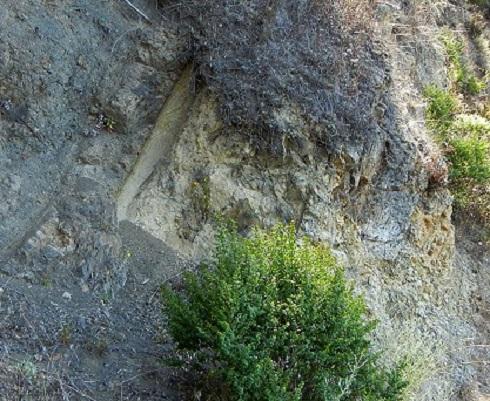 Ez a nem túl bizalomgerjesztő pofa megközelítően 9-10 millió éve leselkedik a san Francisco Öbölben található Berkeley hegyei közt. A vulkanikus eredetű hegység lávafolyamának különös alkotása.