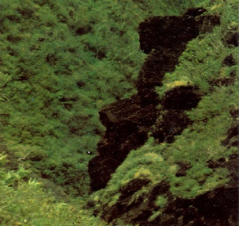 Nyugodtan pihen valaki a Hawai-szigeteken. A láva folyásból megkövesedett képződmény Maui szigeten található. Fotó: momtastic
