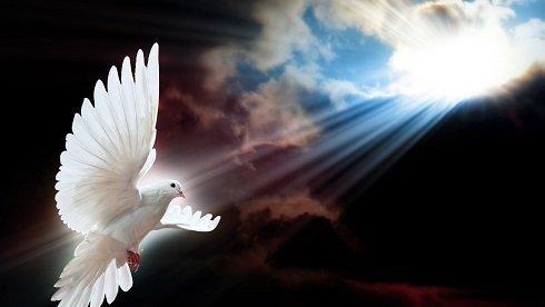 A galamb a halottak lelkének szimbóluma is