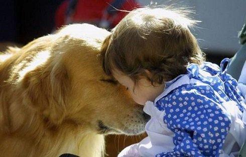 A kutya nem biztos, hogy jó karácsonyi ajándék gyerekeknek