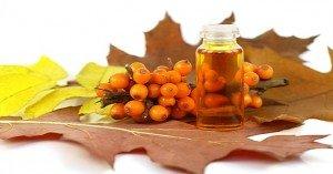 A C-vitamin királynője: Homoktövis