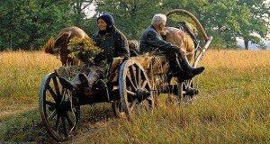 Ősi kultúránkban tisztelték a koros embereket