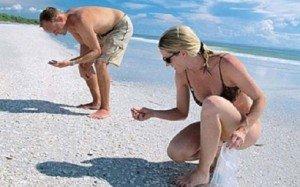 Mit kezdjünk a tengerparton gyűjtött kincseinkkel?