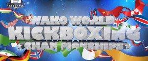Dublini kick-box-világbajnokság- Kilenc egyéni aranyéremmel zártak a mieink