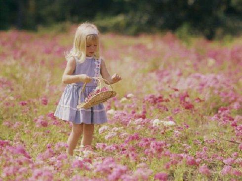 Gyerekeknek – Koszorúfonás virágos réten