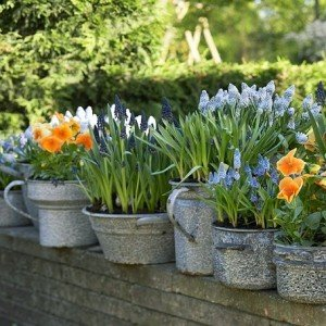 Virágok közt, veled lenni – Tavaszváró ötletek