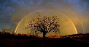 Úgy vagyok magyar, ahogy a fű zöld, az ég kék, a Nap keleten kél