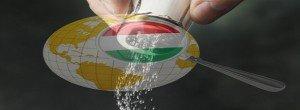 Mi magyarok vagyunk a földi, vagy világi tudomány sója
