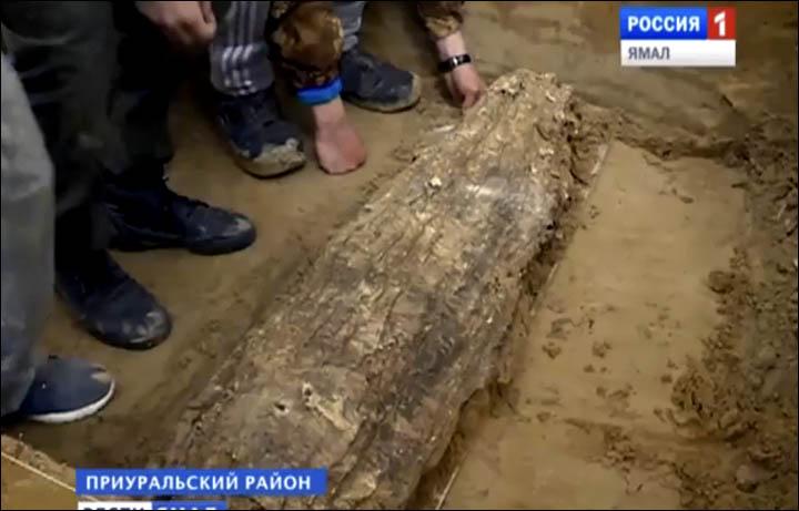 A régészek dolgoznak közel Salekhardhoz. Vélaményük szerint a feltárt múmia egy gyermek, vagy legfeljebb egy tinédzser.Fotó: The Seiberian Times