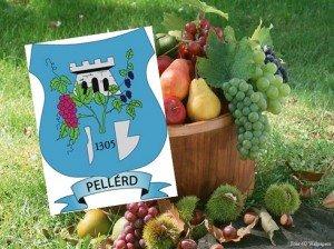 Családi Hétvége – Őszi Terményünnep Pellérd községben