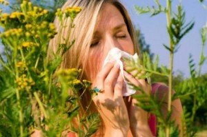 pollen-allergia-kezelese-gyogymodok-fenyterapia-video