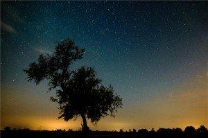 Borult idő – éjjel felhők mögé bújnak a Perseidák?