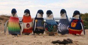 Pingvinek pulóverben