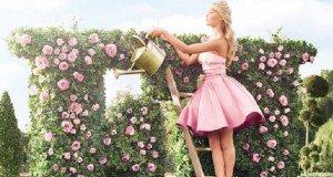 Rózsaszín mámor a kertben