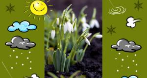 Tavasz, tél közepén