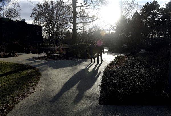 Egy pár sétál a margitszigeti tónál 2015. január 10-én. Budapesten megdőlt a napi melegrekord, a belvárosban 16,7 Celsius-fokig melegedett a levegő. A korábbi legmagasabb hőmérsékletet, 15,1 fokot ezen a napon 2007-ben mérték ugyancsak a belvárosban. MTI Fotó: Bruzák Noémi