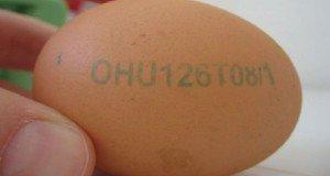 Amit a tojás jelöléséről tudni kell
