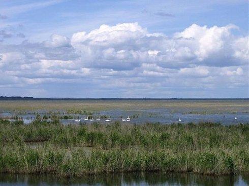 Uelgi-tó
