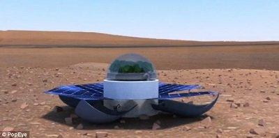 A megszokottól eltérő marsi üvegház