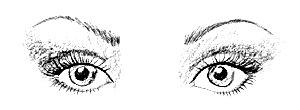 kerek-.szem