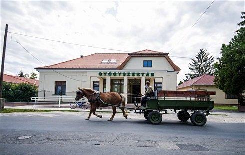 Egy lovaskocsi halad a Fő utcán, a Győr-Moson-Sopron megyei Lébényben 2013. július 12-én. Lébény azon tizennyolc település egyike, amelynek városi címet adományozott a köztársasági elnök 2013. július 15-ei hatállyal. MTI Fotó: Krizsán Csaba
