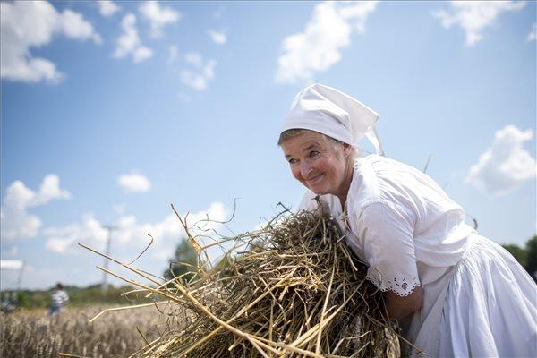 Marokszedő nő a Mohácsi Polgárok Olvasókörének hagyományos aratónapján a város határában.