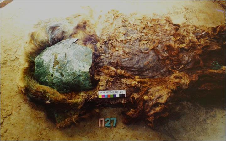 mumia 5