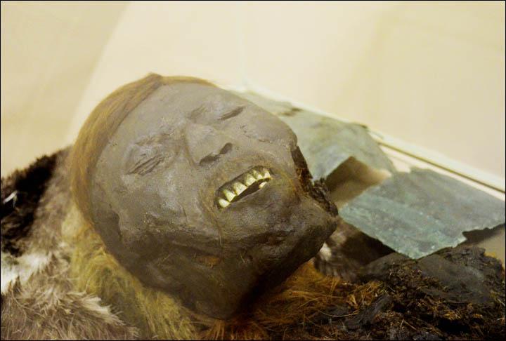 mumia 7