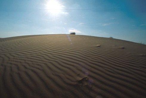 Fülöpházi homokbuckák