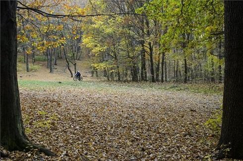 Kerékpárosok az őszi erdőben Salgótarján közelében 2013. október 20-án. MTI Fotó: Komka Péter