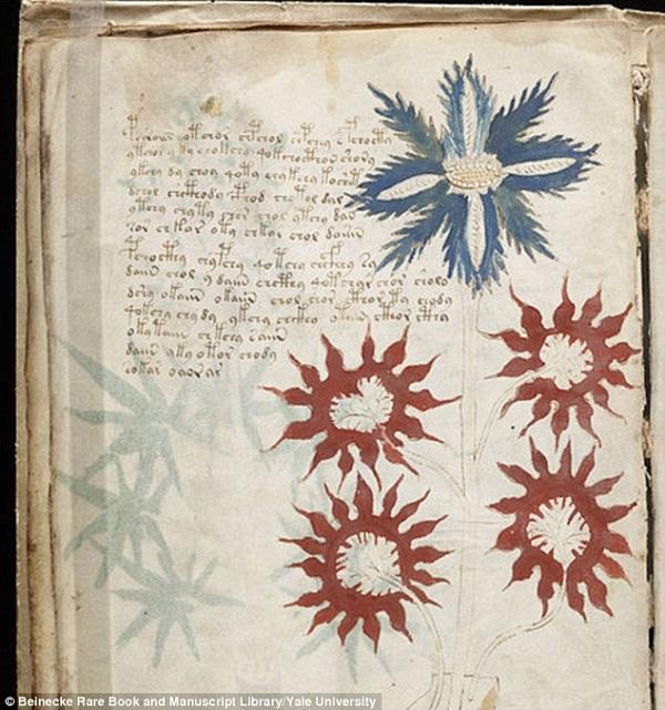 A könyv bal szélén lévő felirat eddigi feltételezések szerint nahuati (arabhoz hasonló) nyelven íródott.