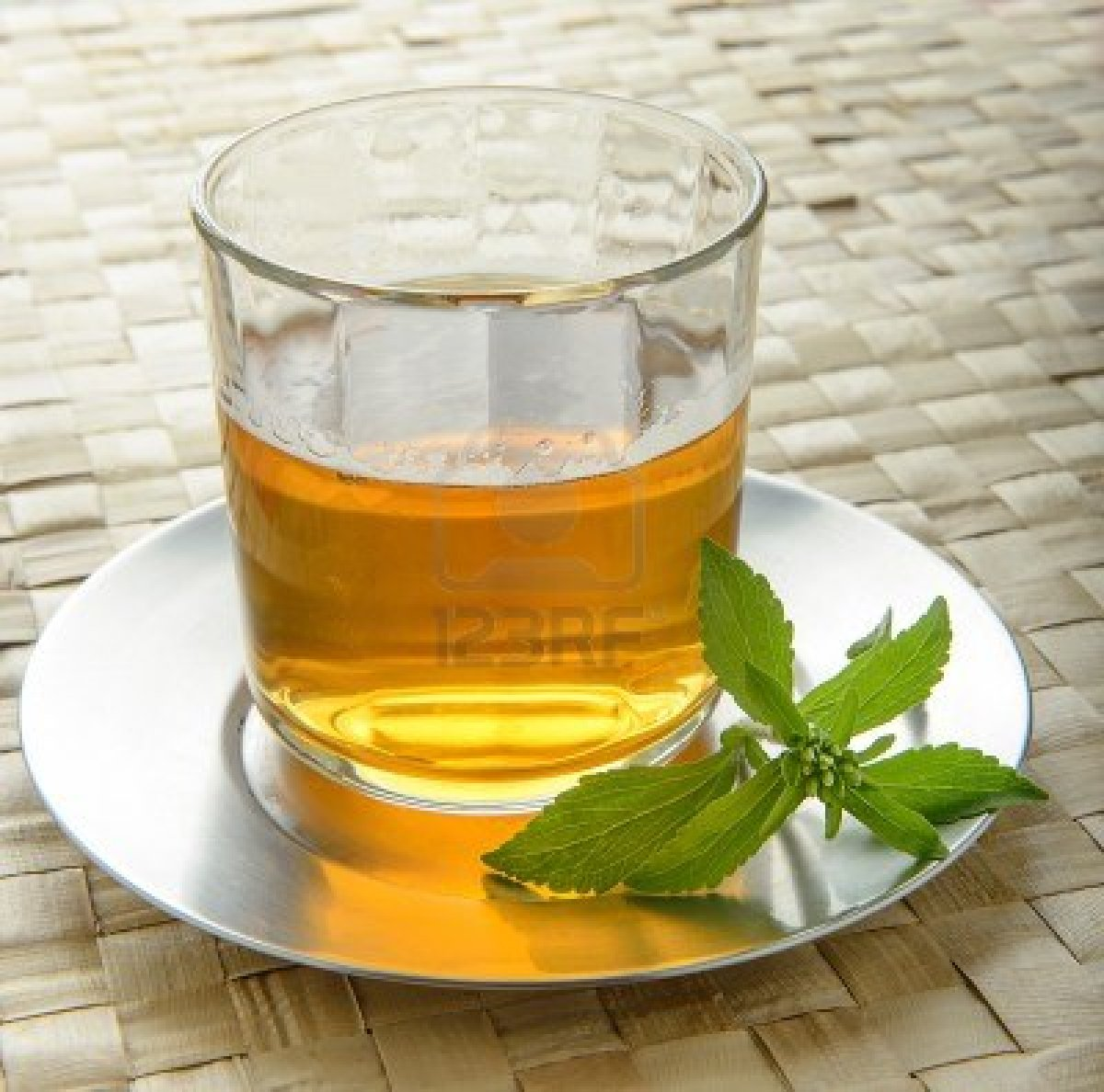 stevia-tea